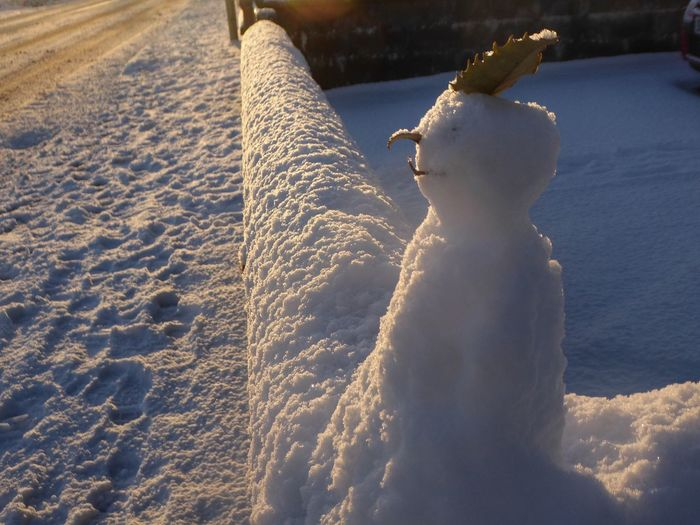 High Angle View Of Snowman