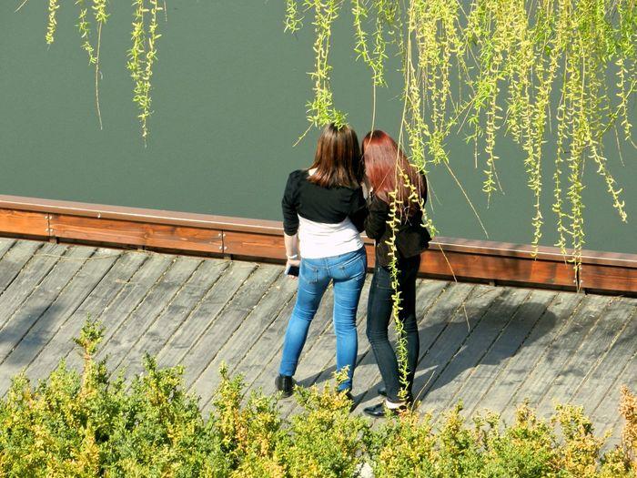 Full Length Rear View Of Women Standing On Pier Over Lake