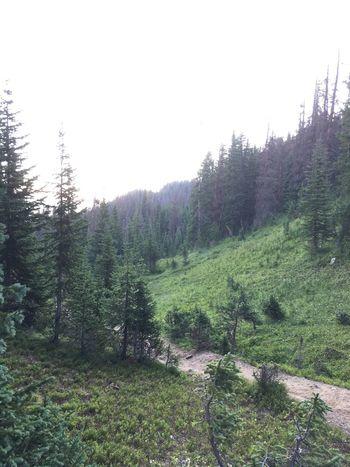 Colorado Photography Estes Park, CO Rockymountainnationalpark Hikingphotography Colorado Life Morning Dawn