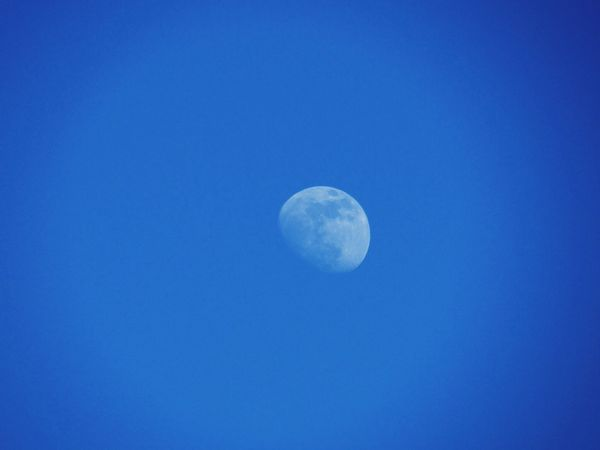 Talking to the moon Moon Sky Life Paradise