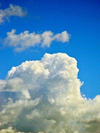 Cumulus Cloud ☁