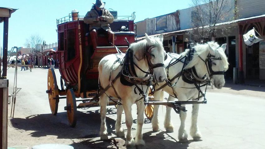 Tombstone Old Western Town Lovethisplace Cowboys Stagecoach Horses