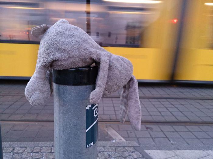 Stuffed toy on pole by tramway