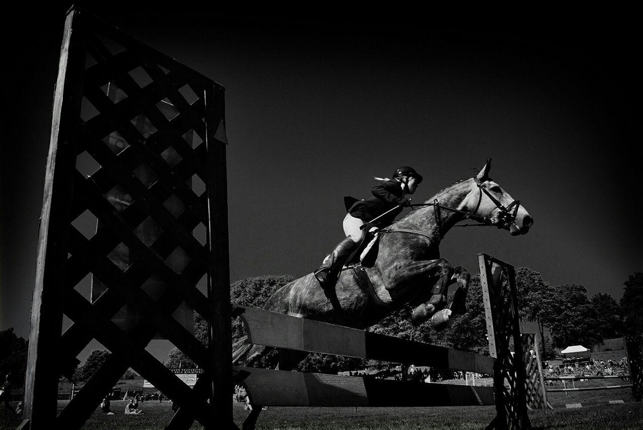 Woman riding horse over hurdle