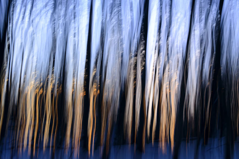 Full frame shot of grass against blue sky