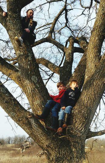 Family on bare tree against sky