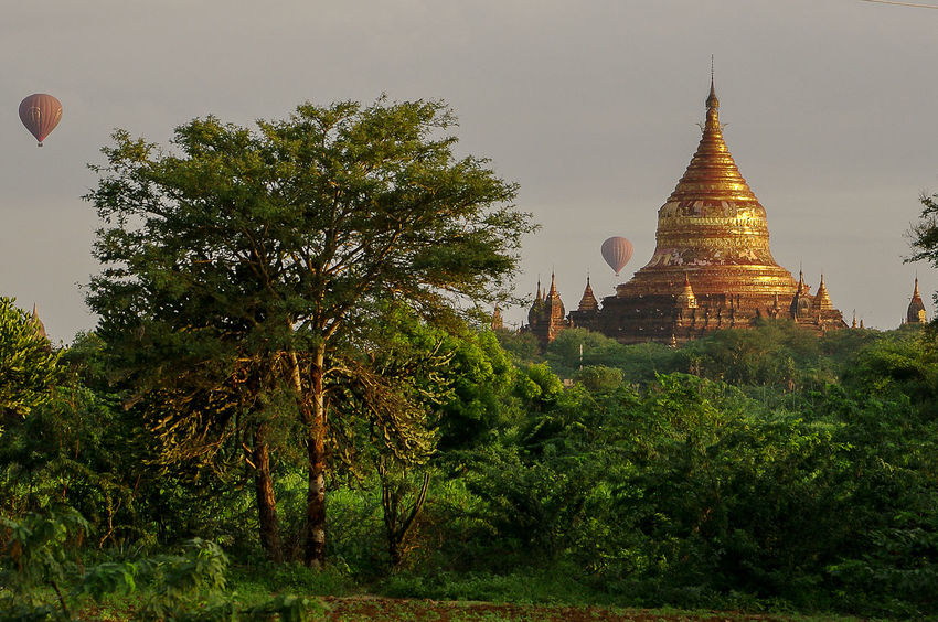 Bagan A Architecture Atmosphere Bagan Baloon Beautiful Beautiful Morning Burma Famous Place Green History Light Morninglight Myanmar Mystic Place Of Worship Red Religion Spirituality Stupa Temple Temple - Building Travel Travel Destinations Tree