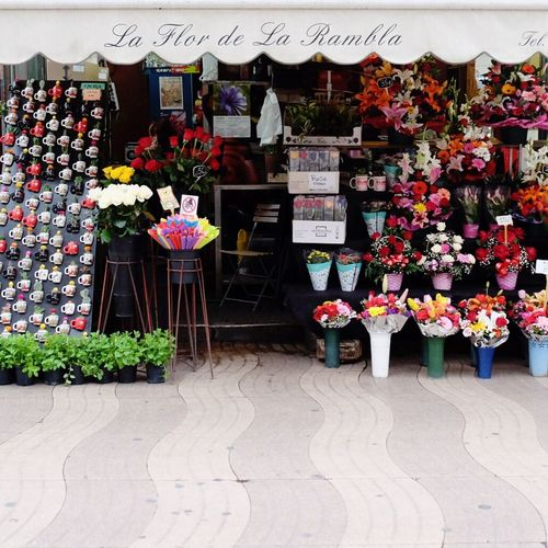 Flower pots at store