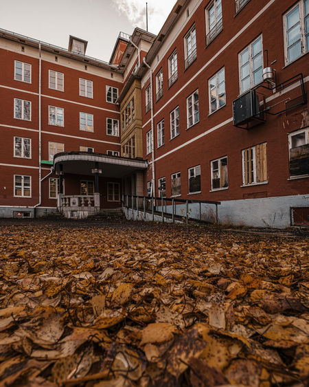 Surface level of dry leaves on street against buildings in city
