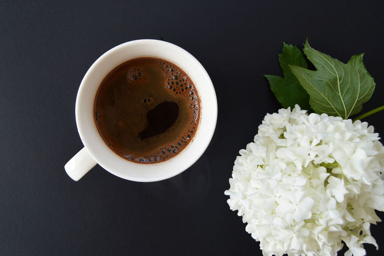 Coffee time with beautiful flower Coffee Shop Coffee Time Black Background Black Coffee Cafe Cafeteria Close-up Coffee - Drink Coffee Break Coffee Culture Coffee Cup Coffee Cups Coffeetime Cream Directly Above Drink Drinking Flower Flower Head Food And Drink Freshness Indoors  Leaf Refreshment White Flower