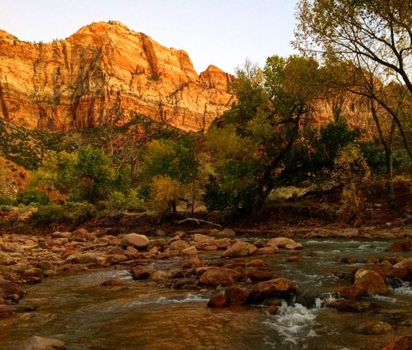 Zion National Park Hiking Utah Dessert Gorgeous Hike Amazing Naturesbeauty Hiker Beauty In Nature Wilderness Hikingphotography Nature Landscape Loveit Hiking Adventures