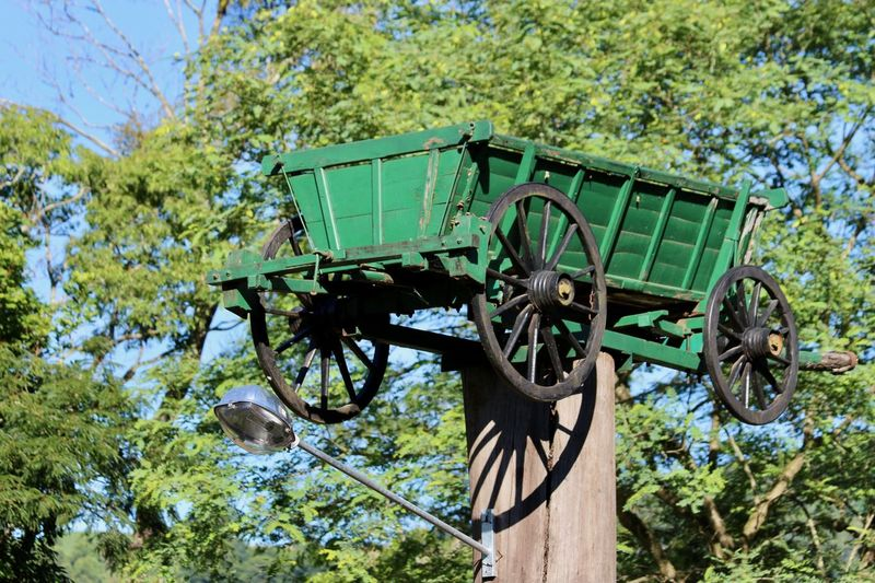 Rural signs from past... Agricultural Machinery Bird Cart Wheels Day No People Old Plow Outdoors Ox Cart Past Rural Instruments Plow Rural Scenes Sky Tranquility Trees Trunk Wheels