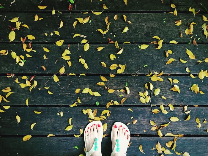 Low section of woman standing on pier with autumn leaves