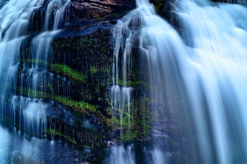 Beauty In Nature Blurred Motion Environment Falling Water Flowing Flowing Water Forest Land Long Exposure Macro Motion Nature No People Outdoors Plant Power In Nature Purity Rock Rock - Object Scenics - Nature Solid Speed Tree Water Waterfall