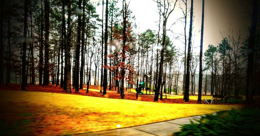 Playground Excercising Chelsea Alabama No Kids Wetandcold