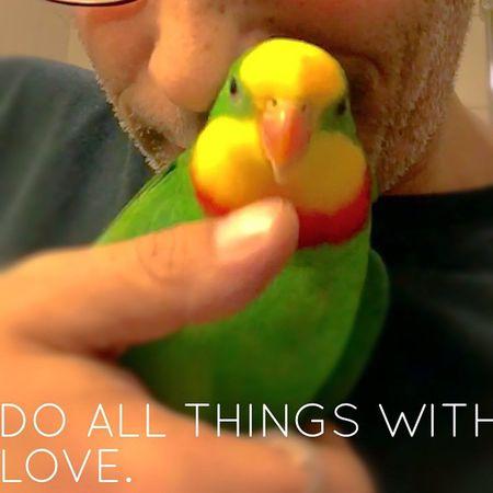 Pic Picoftheday Instapic Polaroid Portrait Selfie Tumblr Lomoblog Parrot Papagai Parrotlife Parrotmylove Superb_parrots Schildsittich @animalslove365