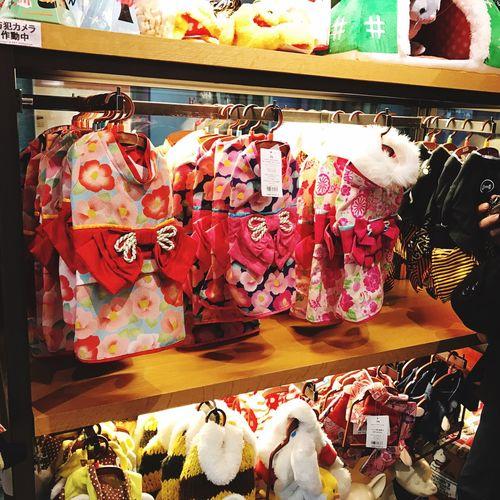 Pet Paradise  Kimonos For Puppy OSAKA Osaka,Japan Osaka 大阪