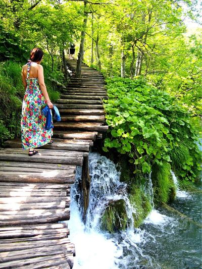 Nofilter Rear View Nature Outdoors Tree Full Length Women Water Green Color One Person Forest Steps And Staircases Beauty In Nature Steps Beauty Real People Staircase People Day Adult Starting A Trip Stairs Croatia Travel Photography Holiday
