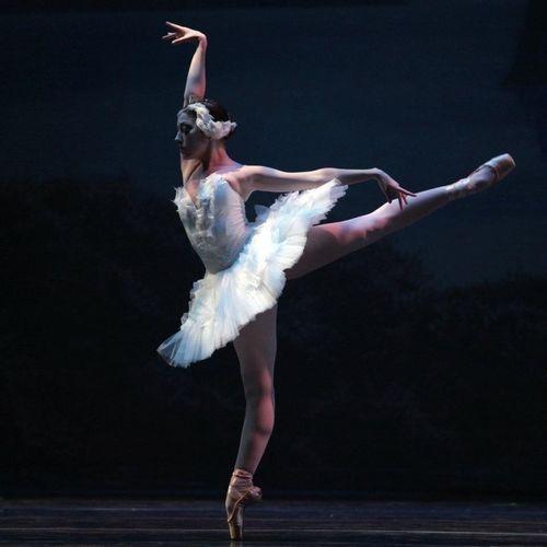 Danse Classique Danza Classica Danseuse étoile Tutu