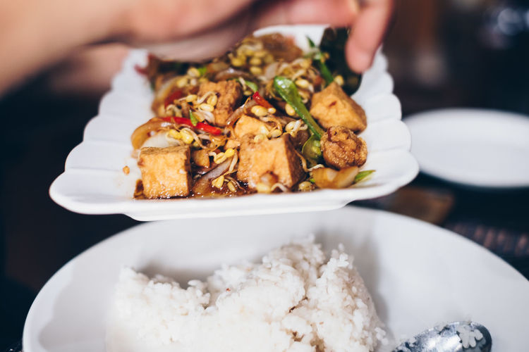stir fried tofu, bean sprout, beans, bell pepper and spices.` Food Food And Drink Plate Ready-to-eat Hand Human Hand Close-up Focus On Foreground Wellbeing Serving Size Healthy Eating One Person Human Body Part Business Rice - Food Staple Holding Japanese Food Chinese Food Asian Food Tofu Lifestyles People Backgrounds Vegetarian Vegan