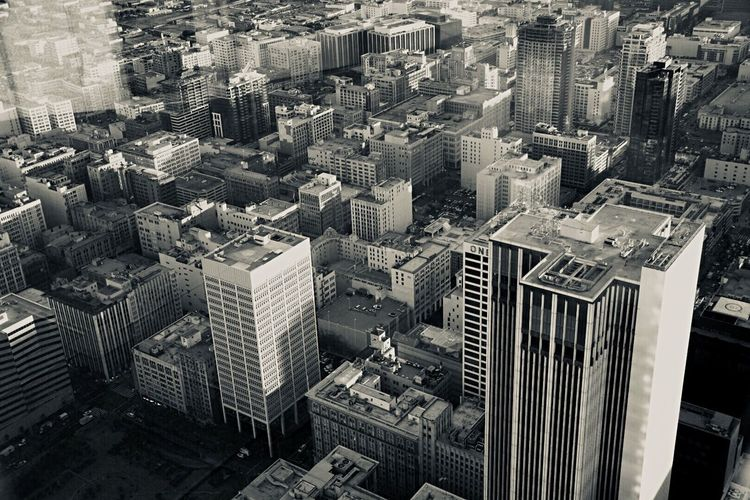 This Amazing Land Nomansland Image Diverse Resist SoCal Love It Urban Skyline City Life Downtown District
