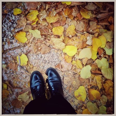 Autumn Autumn Colors Autumn Leaves From Where I Stand Relaxing Enjoying Life Nature Quality Time Colors Of Autumn Fall Beauty