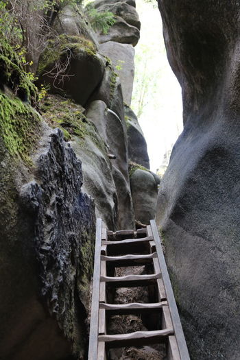 Adršpach Adršpachské Skály Czech Czech Republic Ladder Wandering Wanderlust Architecture Beauty In Nature Built Structure Day Forest Land Low Angle View Nature No People Outdoors Plant Rock Rock - Object Rock Formation Scenics - Nature Solid Staircase Tranquility