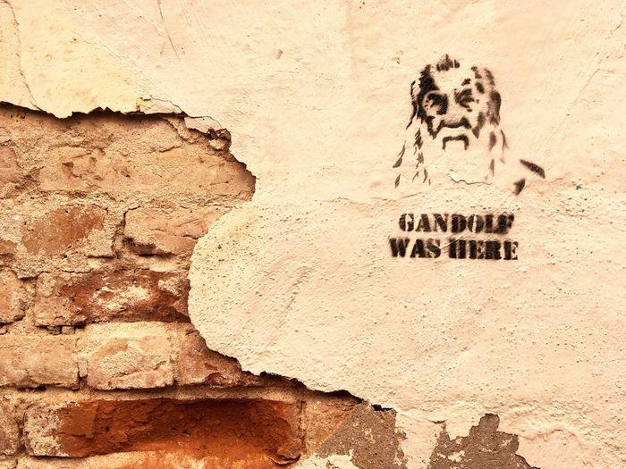 LOTR Gandalf