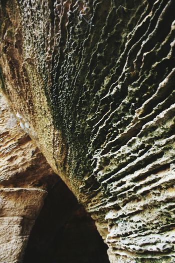 Diu  naida Caves Check This Out! Nature Photography Naturecloseups Indianphotographer Prettyold Beautiful View The Great Outdoors - 2016 EyeEm Awards Nature's Diversities Found On The Roll Selective Focus