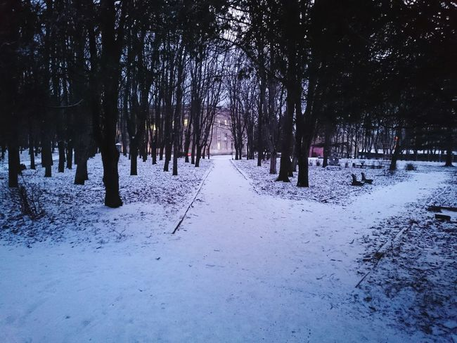зима парк холода лермонтов First Eyeem Photo