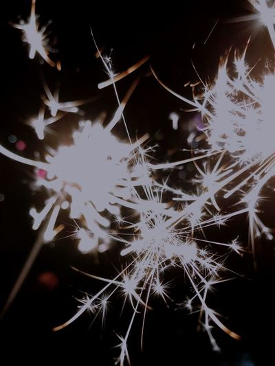 New Years Eve EyeEm Best Shots EyeEmNewHere Ligths Sparkles ✨ Sparkler Fragility Night No People Beauty In Nature EyeEmNewHere