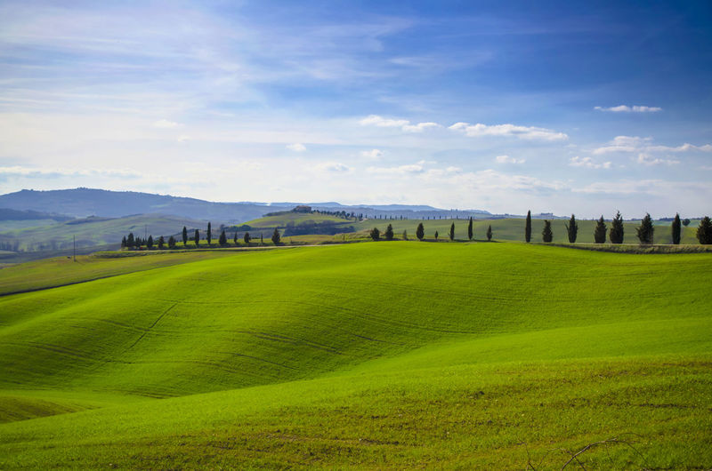 Landscape in Tuscany, Italy. Green Color Road Tree Agriculture Alley Beauty In Nature Blue Day Field Grass Hill House Idyllic Italian Culture Landscape Mountain Mountain Range Nature No People Outdoors Rural Scene Scenics Sky Tranquil Scene Tranquility