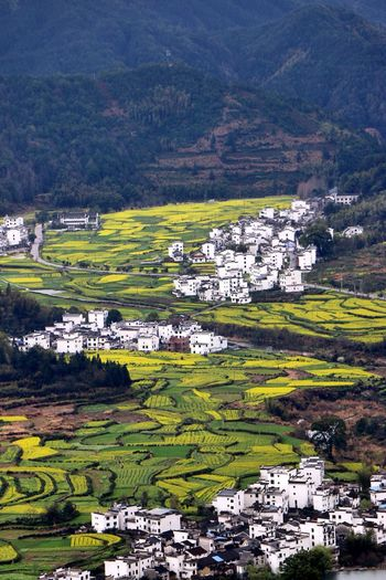Landscape Outdoors Social Issues Terraced Field Hill Agriculture No People Nature Rural Scene Day Building Exterior Wuyuan China Go Higher