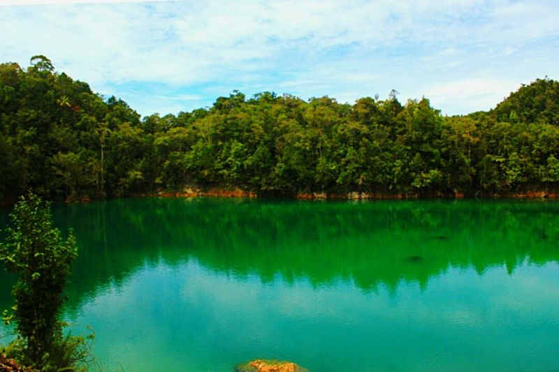 Uter Lake, West Papuan Uterlake Lakeview Lakephotography Septhynephotos Westpapuannature Green Nature Landscape #Nature #photography Landscape_Collection Landscape_photography Landscape_lovers Landscaping Landscape Nature Photography [