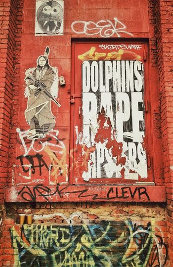 Dolphins Rape Hipsters