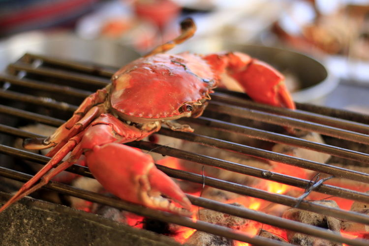 Barbecue Barbecue Grill Close-up Crustacean Day Focus On Foreground Food Food And Drink Freshness Grilled Healthy Eating Heat - Temperature High Angle View Meat No People Preparation  Preparing Food Seafood Selective Focus Wellbeing
