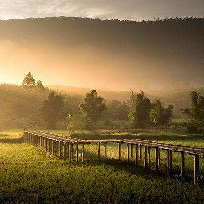 เพียงแค่เสี้ยวนาทีที่ผ่านไป จะทำให้คุณ หลงรักเลย Lumixgx8 Loei Thailand Thetrippacker Reviewthailand Reviewesan Phurua Love_natura Loves_siam Photooftheday Thailand Travelersnote Travelpic Wonderlust Stunning_shots Landscapelovers Ig_masterpiece Dreamingtravel Lumixnz Shellcordovan Geoleserfoto
