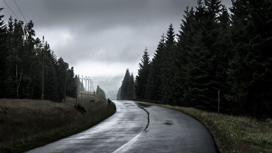 empty, wet, cloudy Asphalt Atmospheric Mood Beauty In Nature Cloudy Contrast Dark Empty Empty Road EyeEm Best Shots Forest Landscape Nature No People Outdoors Perspective Road The Way Forward Tranquility Tree Vanishing Point Wet My Year My View Welcome To Black The Secret Spaces BYOPaper! The Great Outdoors - 2017 EyeEm Awards Lost In The Landscape