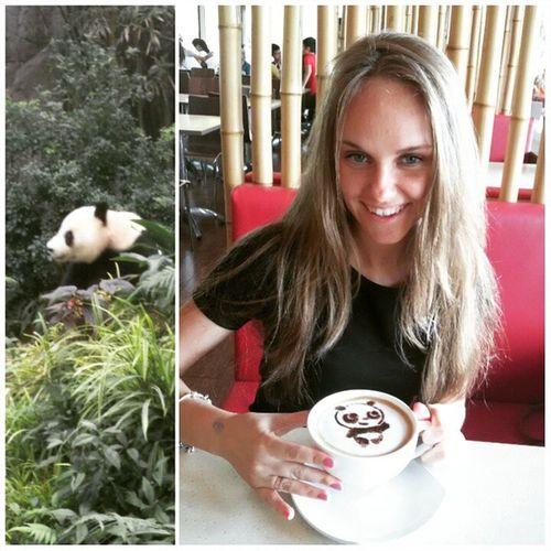 Моя любимая😍 зона-ПАНДЫ!!!🐼а в тематическом кафе на кофе рисуют панд🐼 Zoo панды онитакиемилые