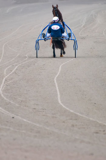 Rear view of woman riding horse on beach
