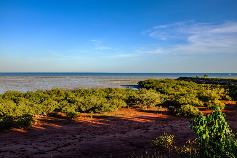 Broome, Gantheaume Point coastline Australia Australian Landscape Coastline EyeEm Best Shots The Week On EyeEm Beauty In Nature Blue Day Horizon Over Water Landscape Nature No People Outdoors Plant Scenics Sea Sky Tranquil Scene Tranquility Tree Water
