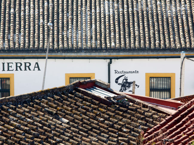 Old houses in Jerez/Spain Andalusia Cities City Cityscape Cityscapes House Facade House Facades House Top Information Information Sign Jerez Jerez De La Frontera Old Roof Roofing Tile Roofing Tiles Roofs SPAIN Text Tourist Destination Tourist Destinations Town Towns Travel Destinations Weathered
