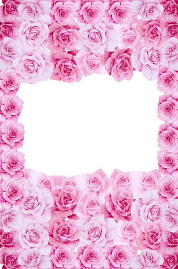 Frame Flower