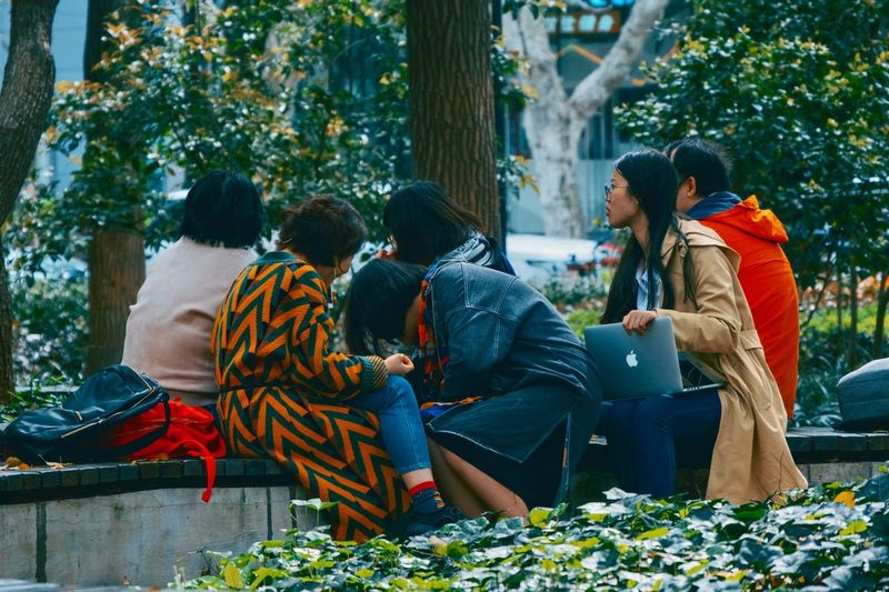 Working Parks Plant Tree Group Of People Real People Lifestyles Nature Growth People Beauty In Nature Outdoors Togetherness Adult Land Women Leisure Activity Rear View Sitting Day