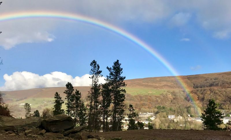 Rainbow over the Welsh Valleys Rainbow Beauty In Nature Scenics Nature Tree Landscape