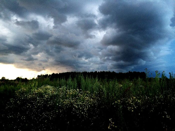 Storm Cloud Nature Weather Sky