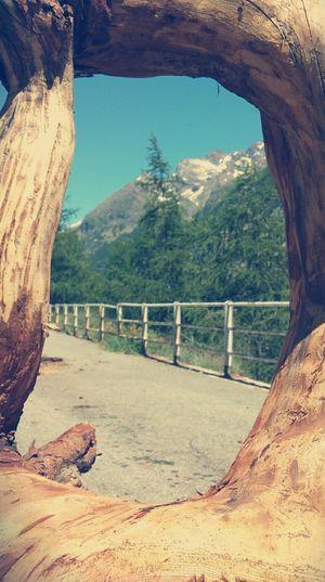 Nature Taking Photos Enjoying Nature Colorful Intothewild Natural Frame Frame