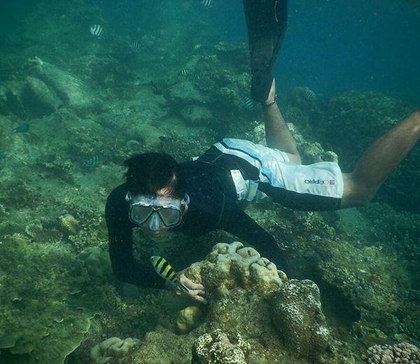 Kasian ikan ini sendirian.. Freediving Pulaupari KepulauanSeribu MyAdventure Mytrip Photography Photooftheday BeautifulIndonesia Instatravel Iloveindonesia Sea Alone Fish Underwater