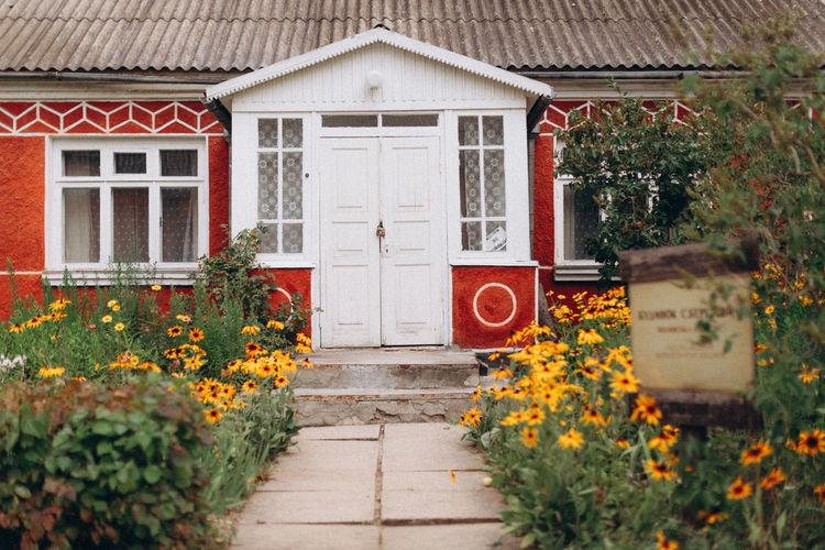 Flowering plants and yellow door of house