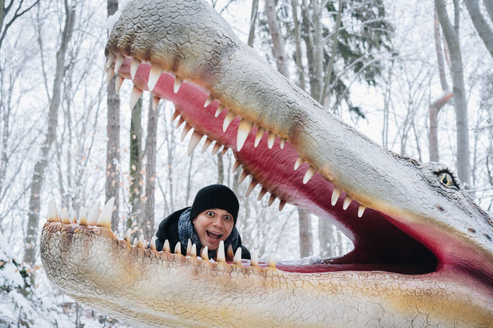 Mouth Mouth Open Fangs Dinosaur Teeth Dinosaurus Frightened  Scared Expression One Person One Man Only Warm Clothing Snow Bare Trees Tree Winter Happiness One Person People Outdoors Adult Day